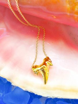 SASHA LICKLE 24KT GOLD DIPPED SHARK TOOTH NECKLACE