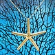 SASHA LICKLE SASHA LICKLE 24KT GOLD DIPPED STARFISH NECKLACE