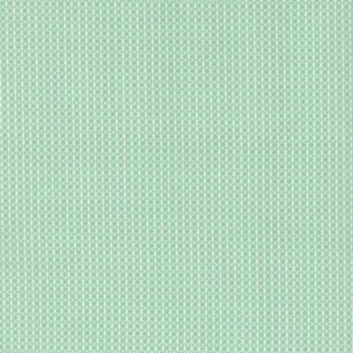 Cotton + Steel Cotton + Steel Basics: Netorious Jam Jar