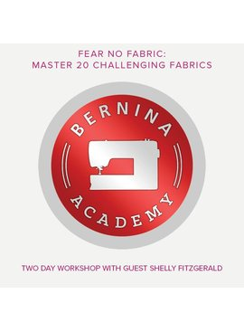 Modern Domestic BERNINA Academy, Friday, February 9 and Saturday, February 10, 10 am - 5 pm with an hour lunch break