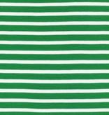 Cloud9 Organic Cotton Knit Colorful Stripe - Green