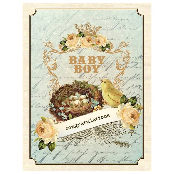 New baby boy card vintage nest by yellow bird paper greetings yellow bird paper greetings yellow bird paper greetings vintage nest boy baby card m4hsunfo