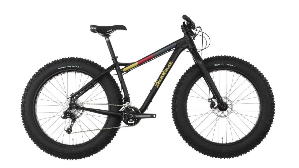 Salsa Blackborow GX 2, '16,