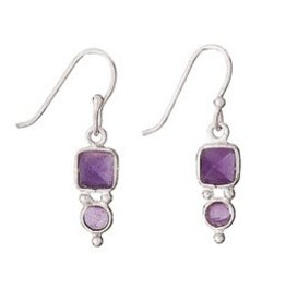 Tiger Mountain Square/Round Amethyst Earring