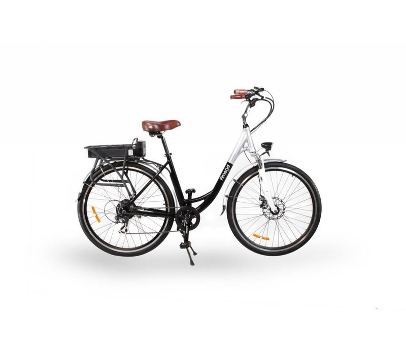 Amego Glide Bike - Used # 5198 New Battery, 1300 Kms