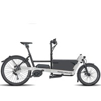 Riese & Muller Packster 40 Touring
