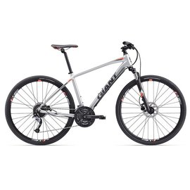 GIANT 17 Roam 2 L Silver/Grey/Red