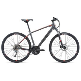 GIANT 18 GIANT ROAM 2 DISC