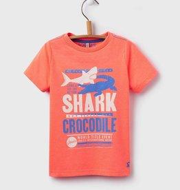 Joules Joules Ben Shark Print T-Shirt