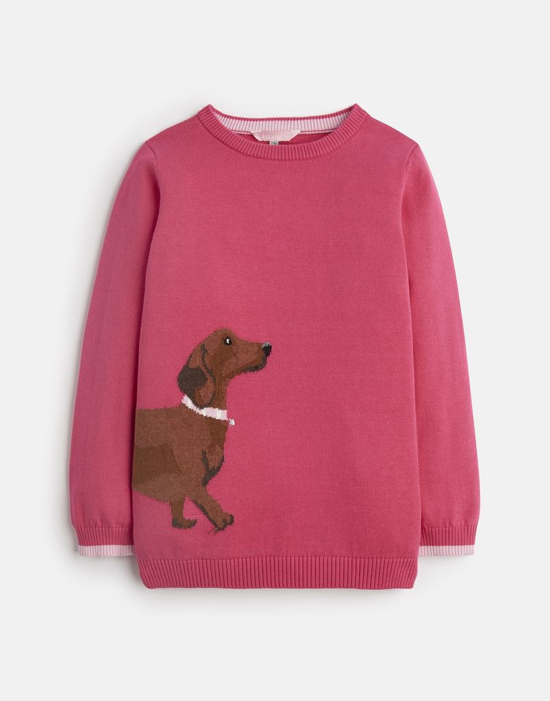 Joules Joules Meryl Dog Sweater
