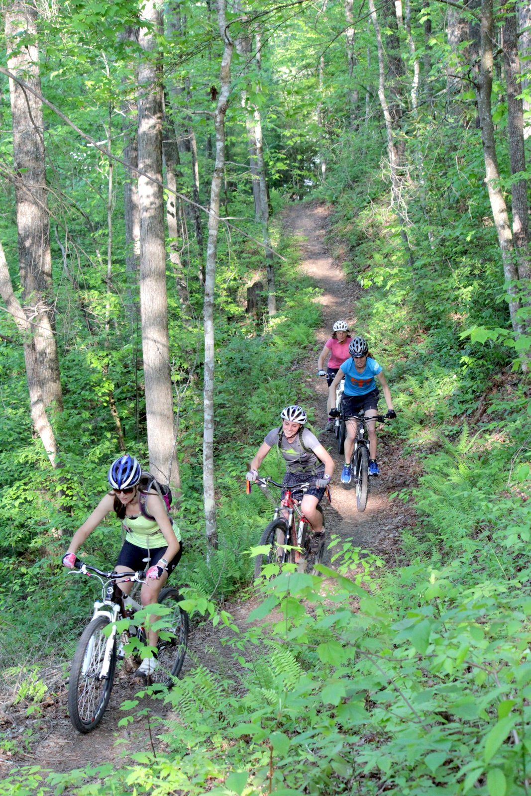Everett Mountain Bike Trails