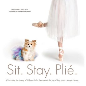 Sit. Stay. Plie., Simon/Gangolli/Collum