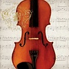 Concerto Violino Napkins