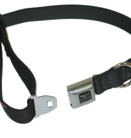 Apparel C6 Dog Collar Small-Black