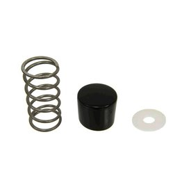 Body 1997-2013 Trunk/Hatch Assist Spring