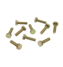 Body 1956-62 Door Hinge Bolt 10 Piece Set