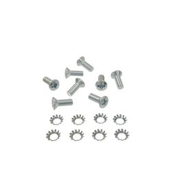 Body 1956-62 Door Hinge Plate Screw 8 Piece Set