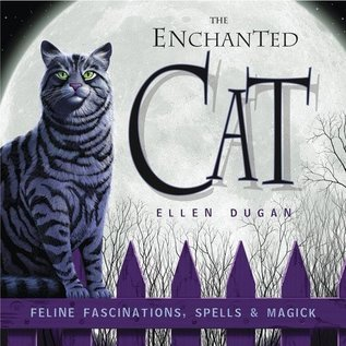 Hex The Enchanted Cat