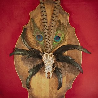 Hex Raccoon Skull Altar Piece with Feathers