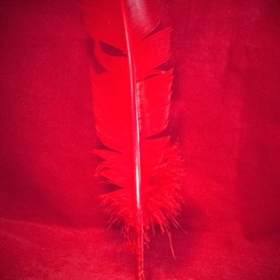 Hex Red Feather Quill Pen