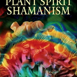 Hex Plant Spirit Shamanism: Traditional Techniques for Healing the Soul