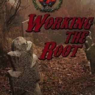 Hex The Conjure Workbook Vol 1: Working the Root