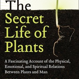 Hex Secret Life of Plants