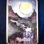 OMEN Moon Pendulum Board