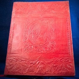 OMEN Large Raven Journal in Red