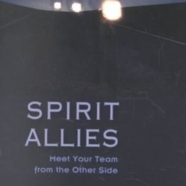 Red Wheel / Weiser Spirit Allies: Meet Your Team from the Other Side