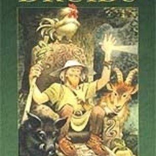 OMEN Tarot of Druids