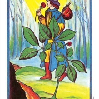 Herbal Tarot Deck