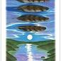 OMEN Vision Quest Tarot Deck