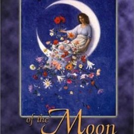 OMEN The Witch's Moon