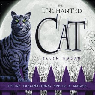 Llewellyn Worldwide The Enchanted Cat