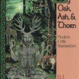 Llewellyn Worldwide By Oak, Ash, & Thorn by Oak, Ash, & Thorn: Modern Celtic Shamanism