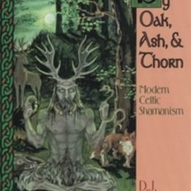 OMEN By Oak, Ash, & Thorn by Oak, Ash, & Thorn: Modern Celtic Shamanism