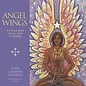 OMEN Angel Wings: An Oracle Book of Love, Light & Healing