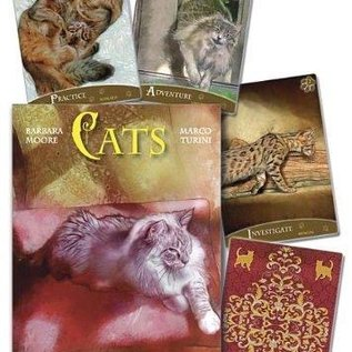 OMEN Cats Inspirational Oracle Cards