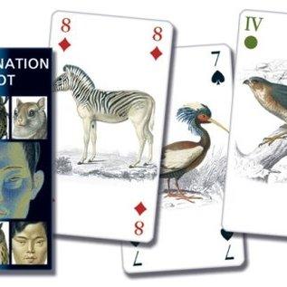 OMEN Tarot of Reincarnation