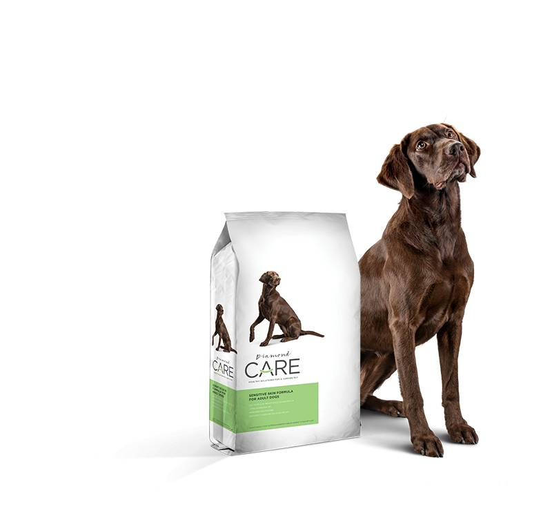 Diamond Diamond Care Sensitive Skin Dog Food