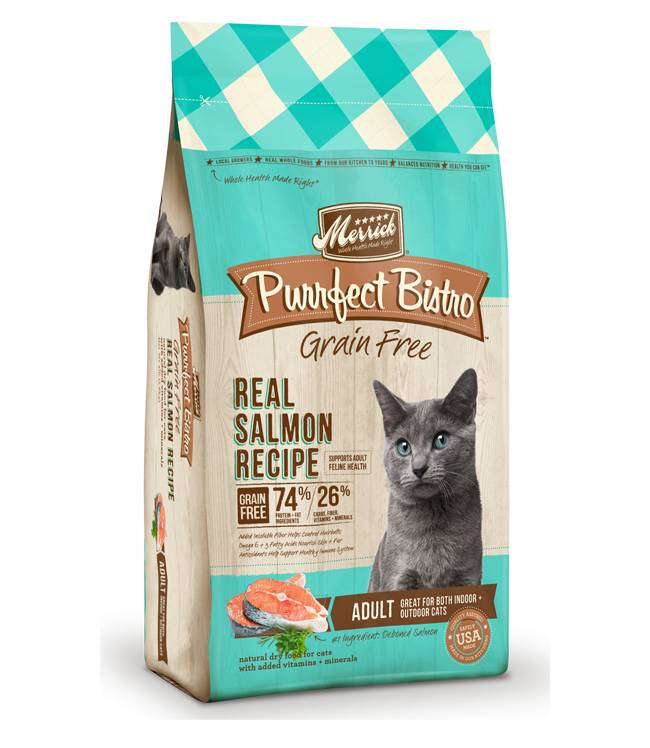 Merrick Purrfect Bistro Grain Free Real Salmon Recipe for Dogs