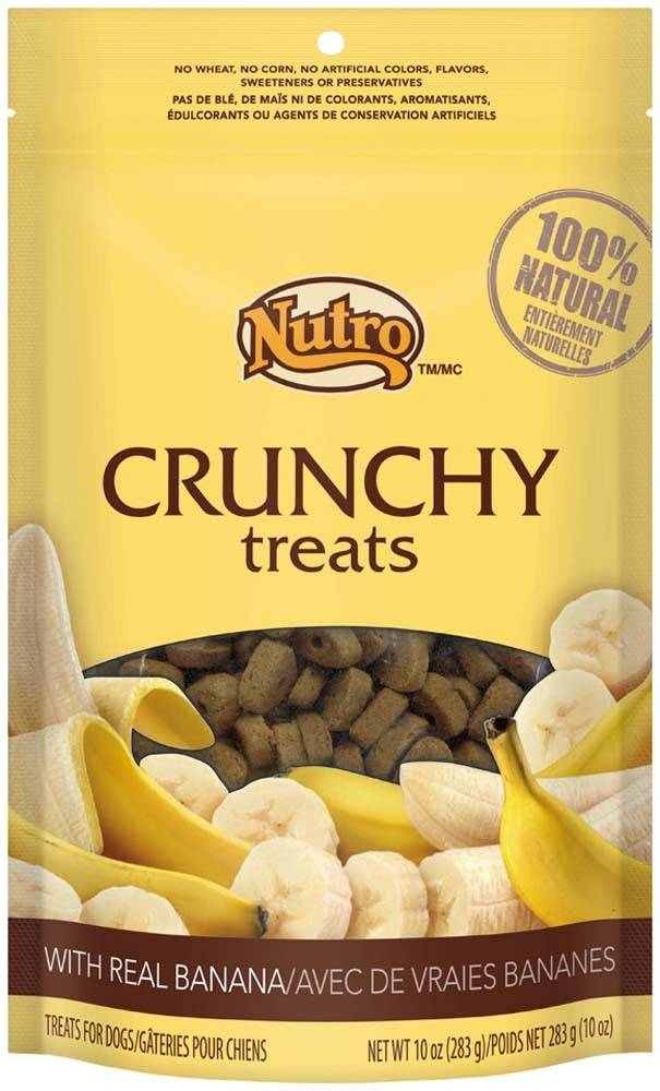 Nutro Nutro Crunchy Dog Treat Banana 10 oz.