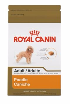 Royal Canin Royal Canin® Breed Health Nutrition Poodle Adult Dry Dog Food