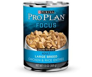 Pro Plan Pro Plan Focus Can Dog Large Breed Chicken/Rice 13 oz