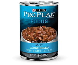 Pro Plan Pro Plan Focus Can Dog Large Breed Beef/Rice 13 oz