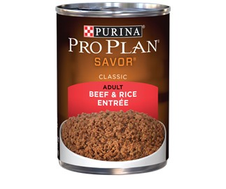 Pro Plan Pro Plan Savor Can Dog Beef/Rice 13 oz