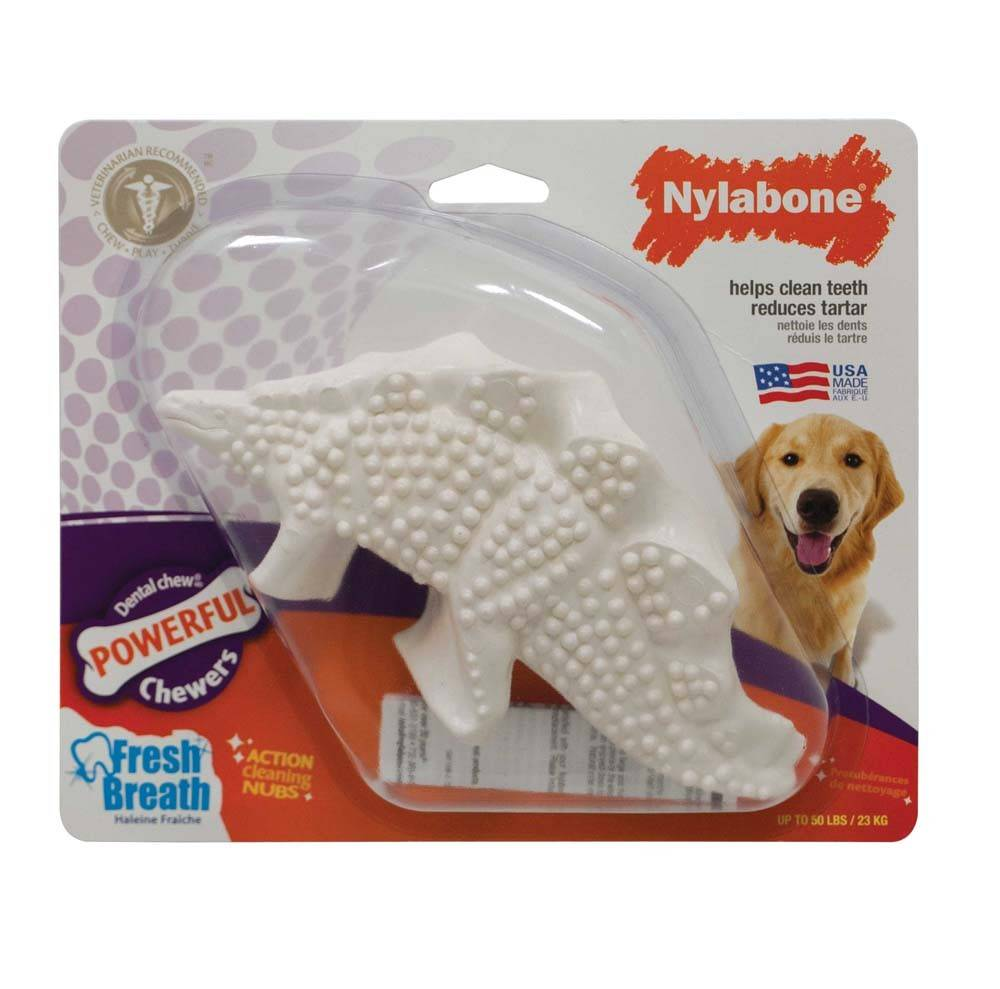 Nylabone Dental Dinosaur Durable Dog Toy