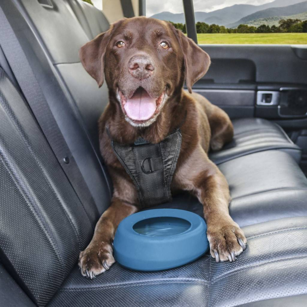 Kurgo Kurgo Wander Splash Free Water Bowl