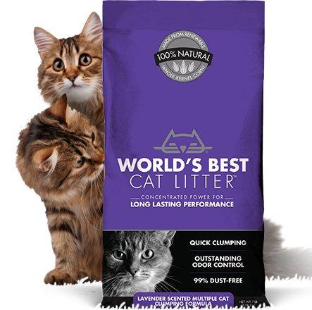 World's Best World's Best Multi-Cat Scented Cat Litter